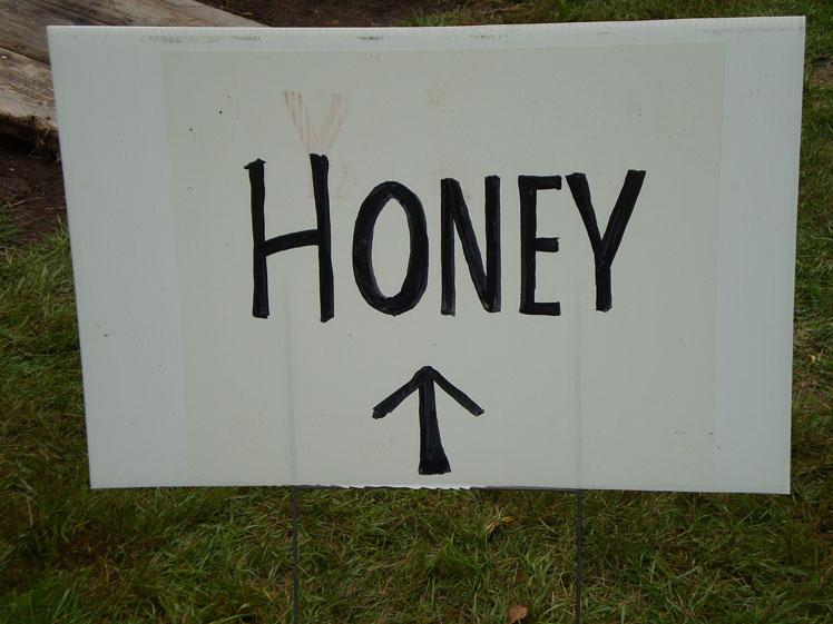 17_Honey