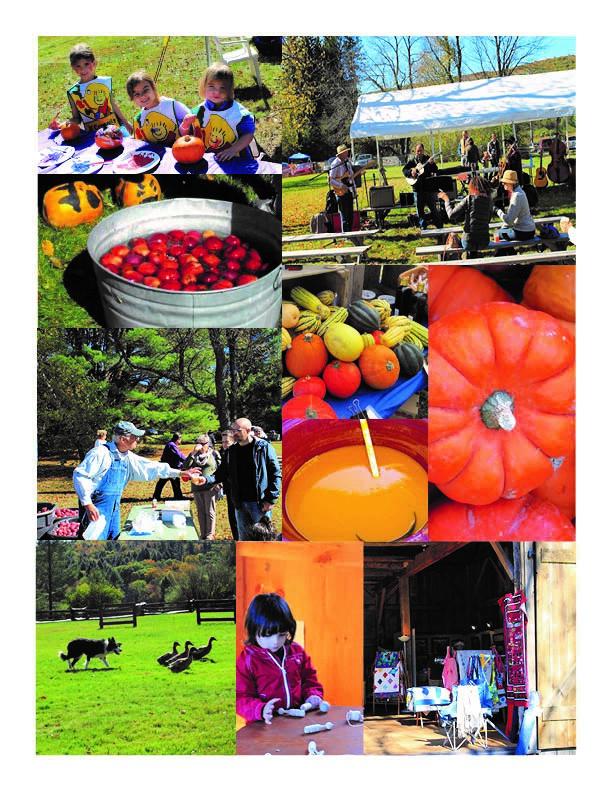 Autumn in Austerlitz images